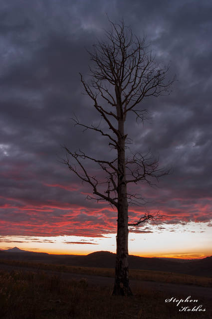 Last Dollar Road, Sunset