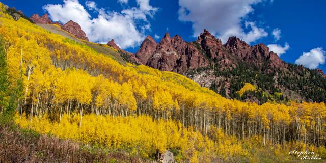 Aspen, Fall