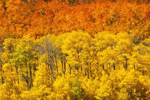 Kenosha Pass, Autumn