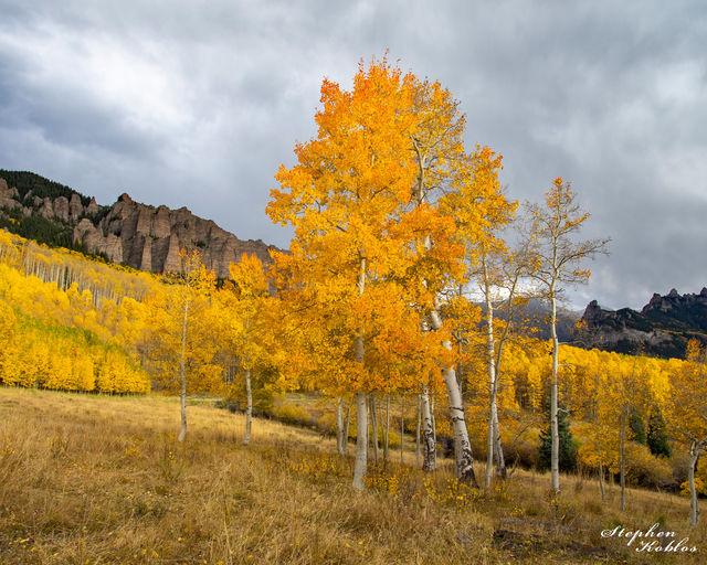 fall, silverjack reservoir