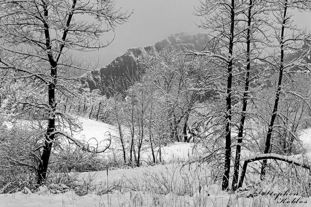 Roxborough State Park, winter