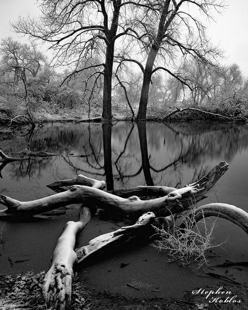 Highlands Ranch, pond, reflection