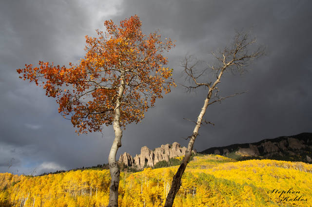 Fall , Silverjack Resevoir