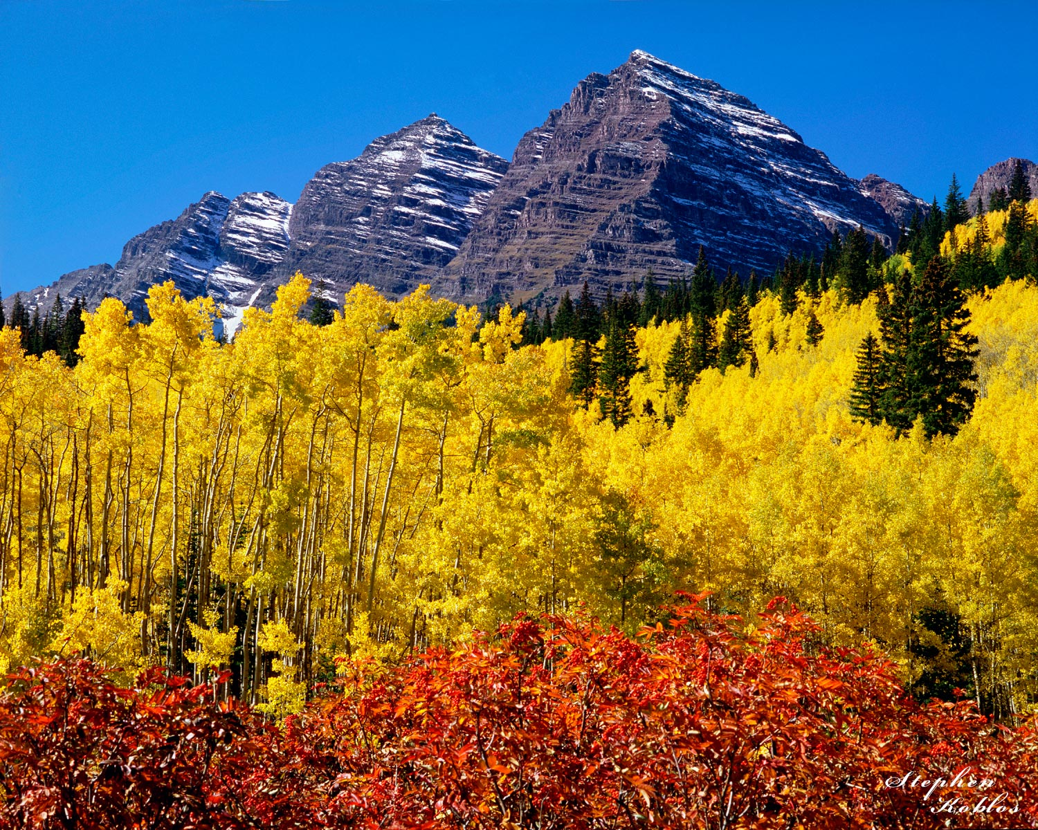 2003, The best fall color I have ever seen at the Maroon Bells....