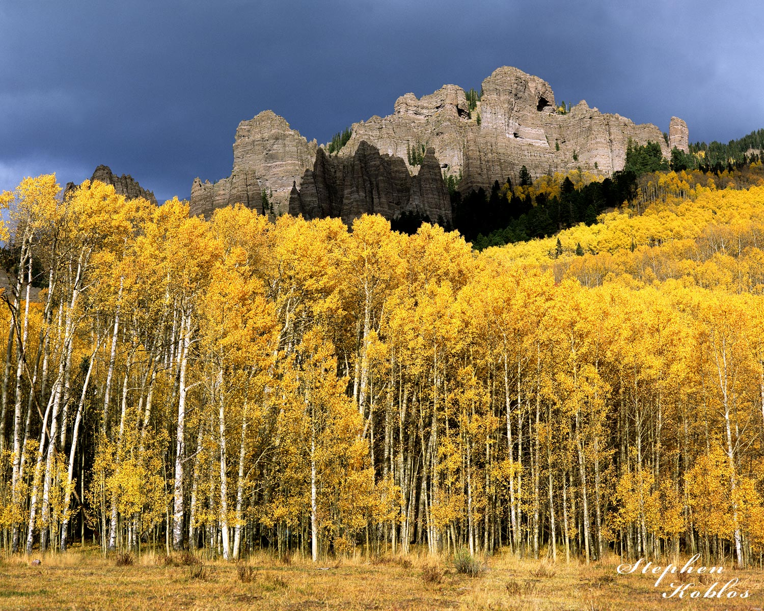 Aspens over Owl Creek Pass  Limited Edition of 250