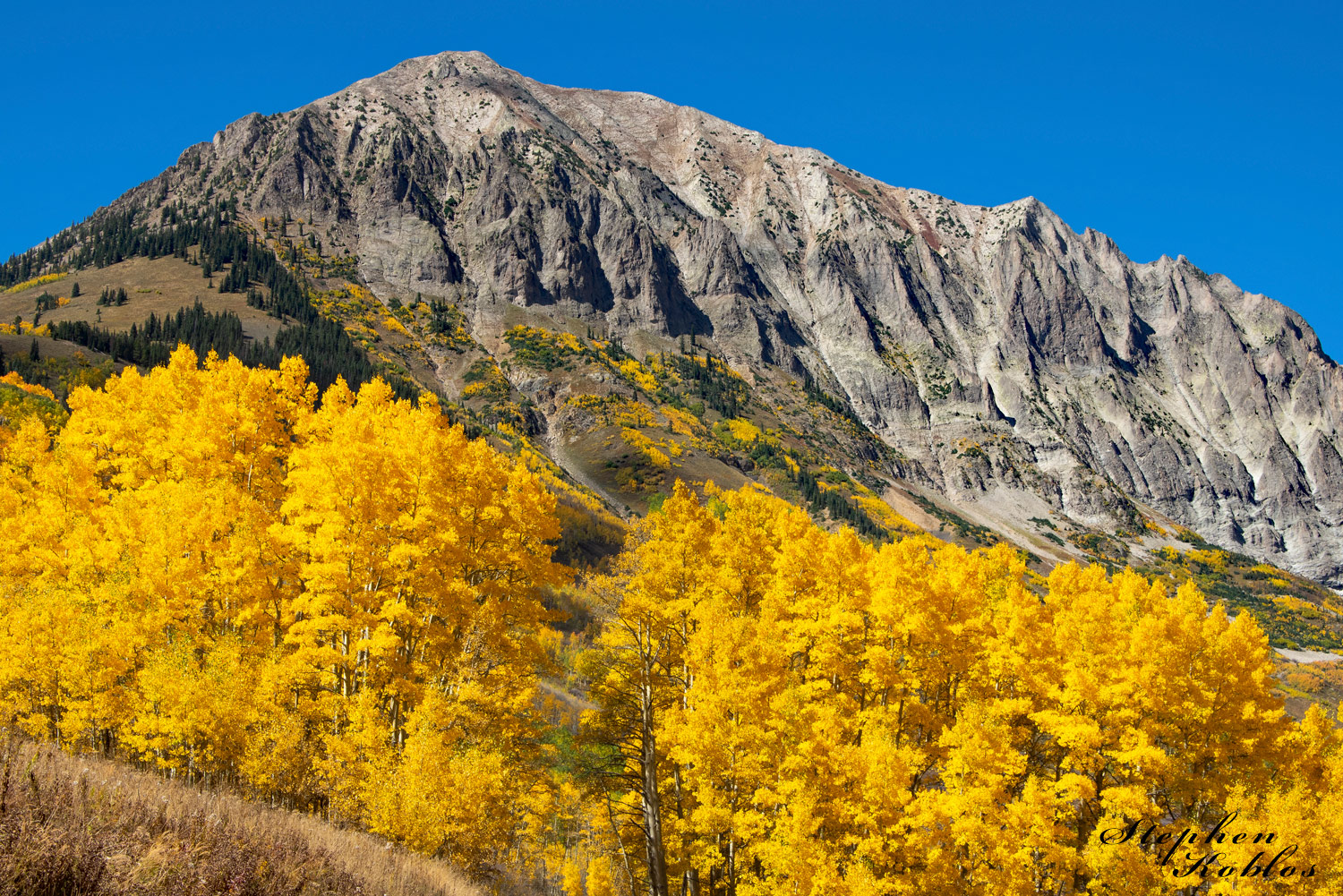 Glowing aspens under Gothic Mountain.  Limited Edition of 250