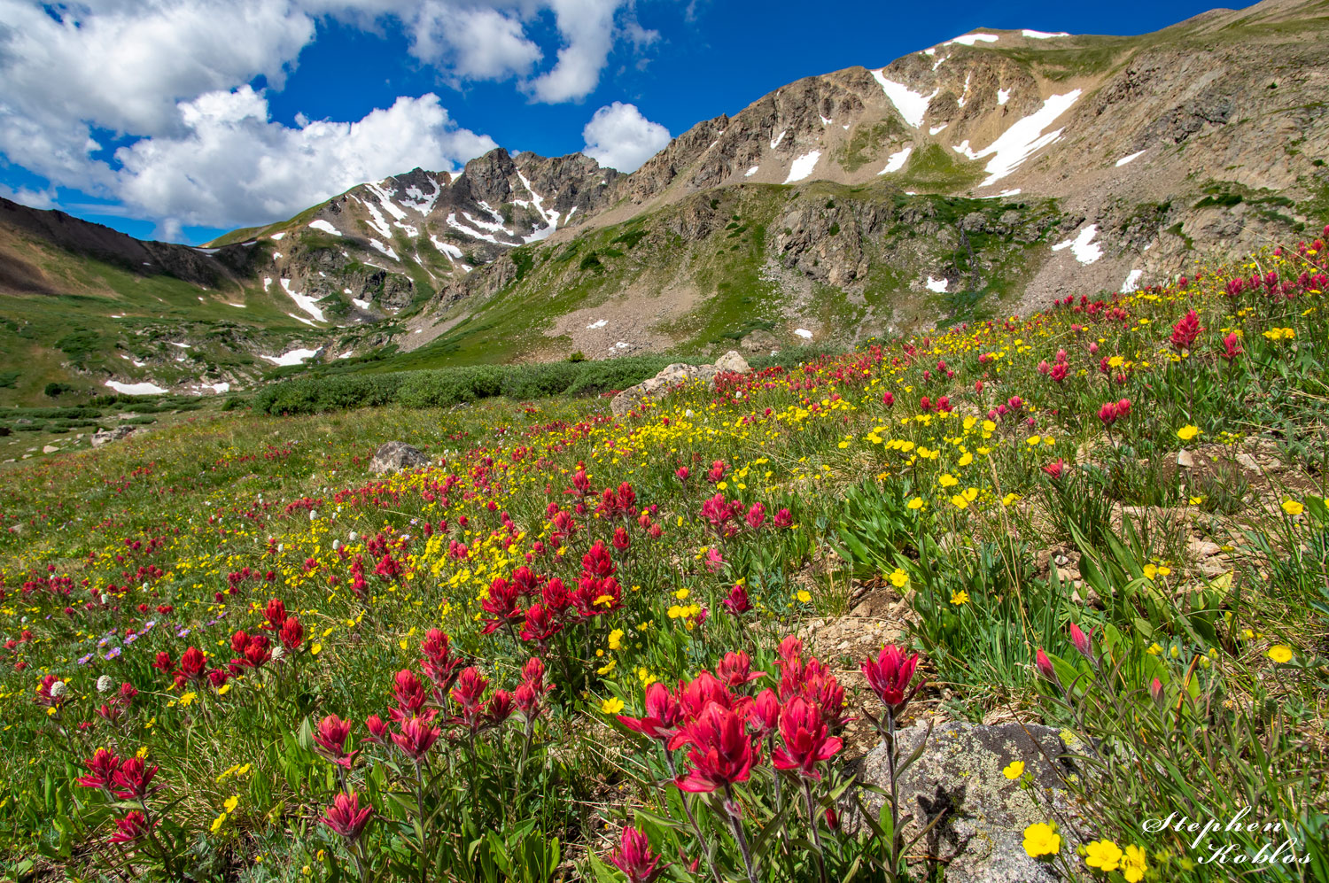 Rosy Paintbrush at Herman Gulch.  Limited Edition of 100