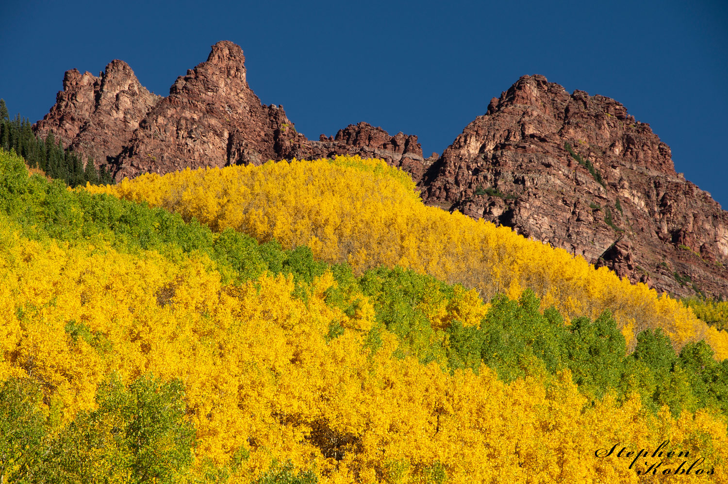 Snowmass In Fall , Changing Colors, photo