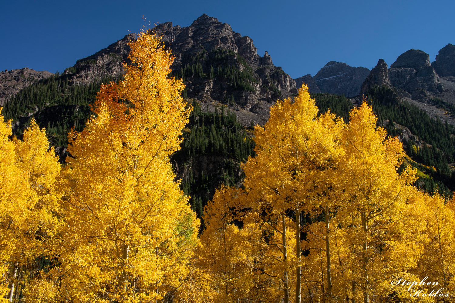 Aspens below Pyramid Peak. Pyramid is in the background.Limited Edition of 100