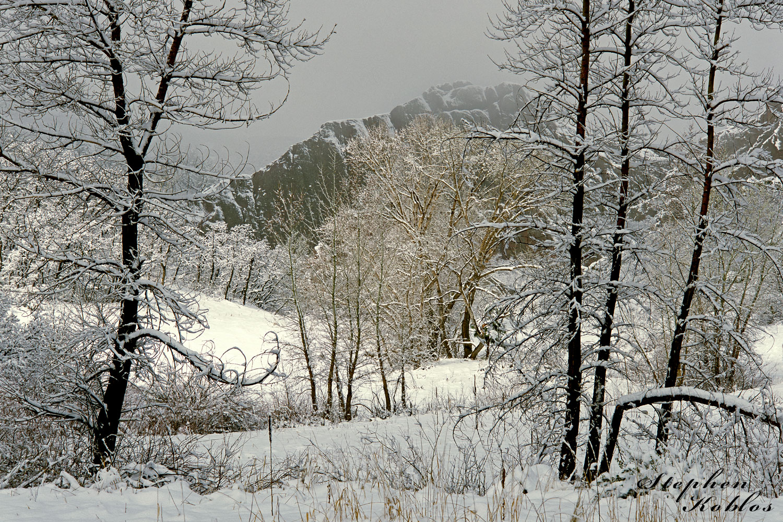 Roxborough state Park , winter, photo