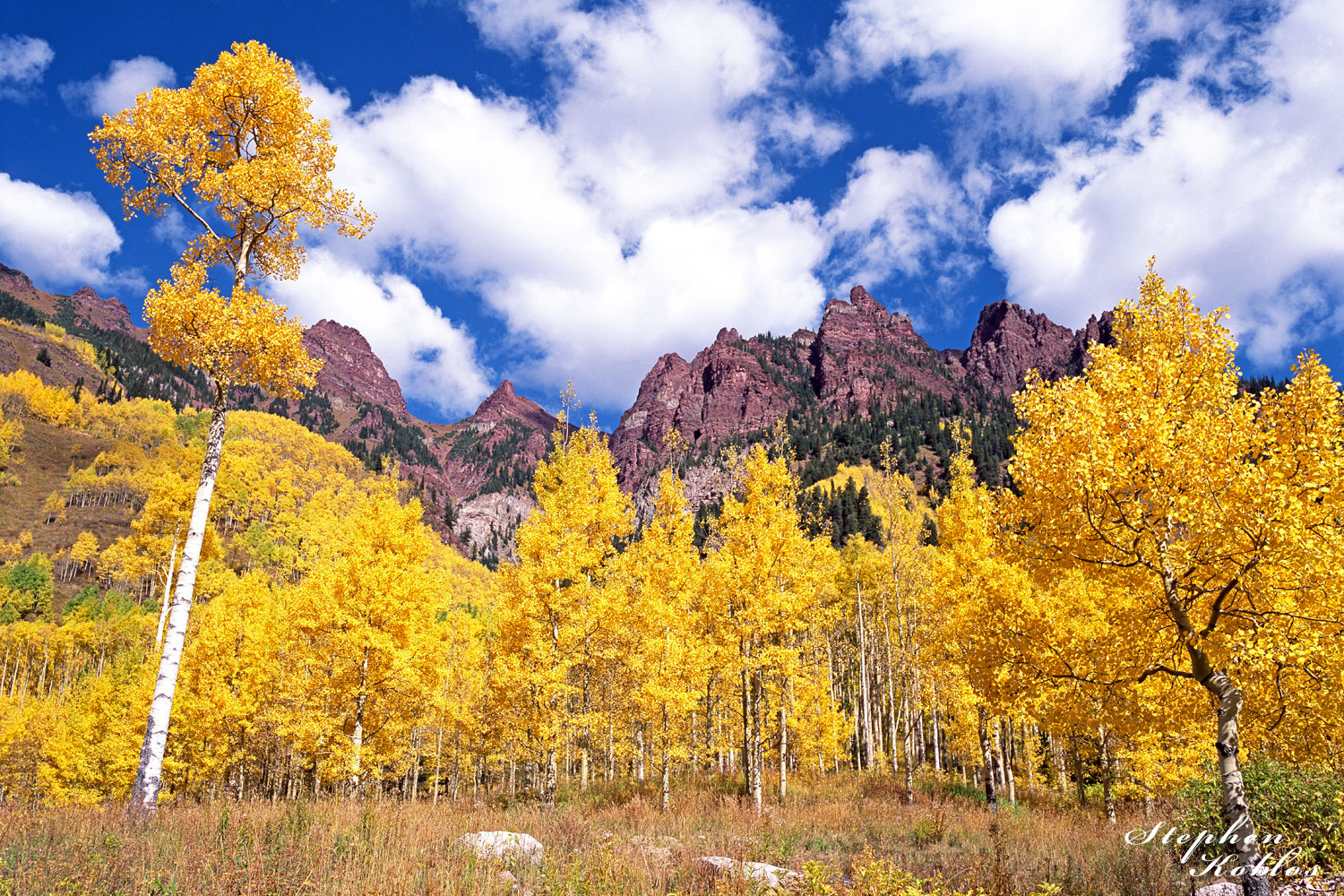 Snowmass , aspens, photo