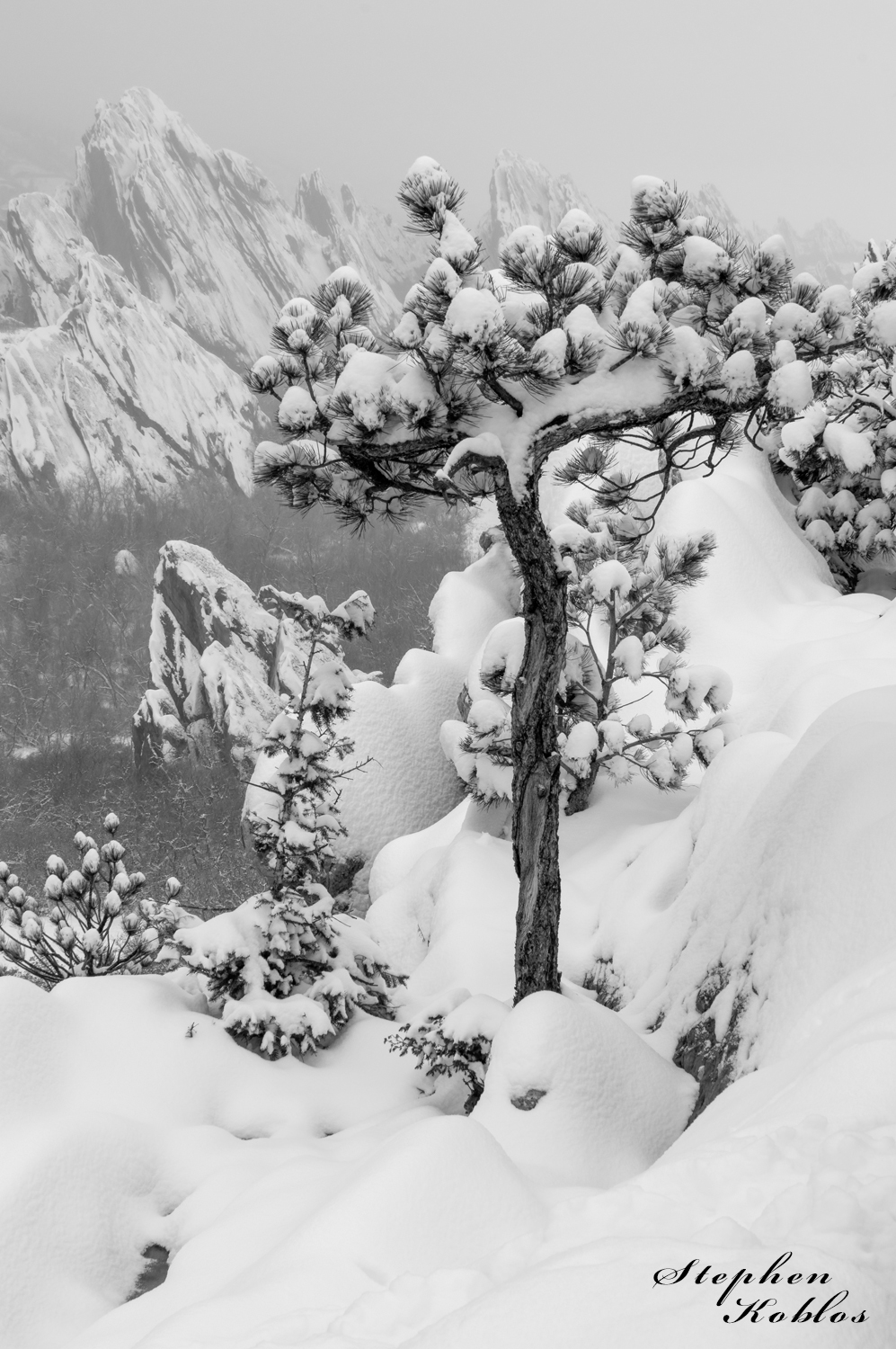 Winter at Roxborough. Limited Edition of 100