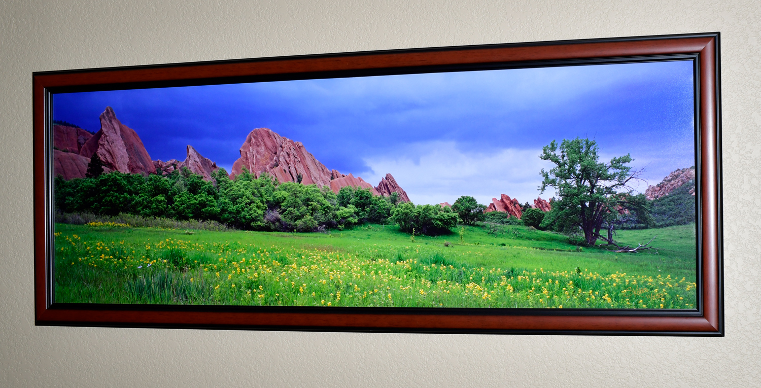 """The photo dimensions are 20""""X60"""". The frame dimensions are 24""""X64""""."""