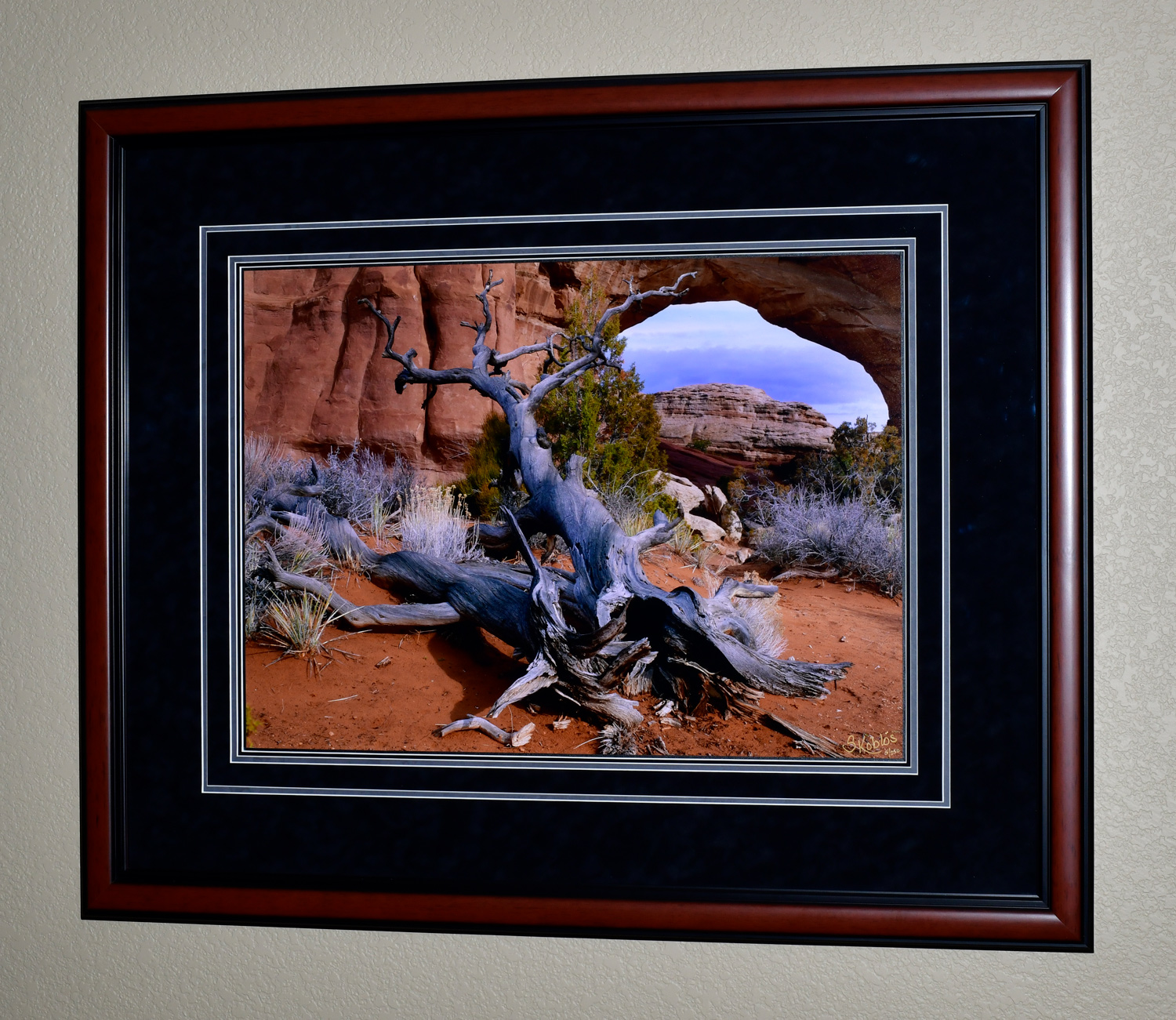 """The photo dimensions are 20""""X27"""". The frame dimensions are 34""""X41""""."""